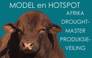 MODEL en HOTSPOT AFRIKA DROUGHTMASTER